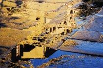 Відображення в тротуарної камені Пьяцца делла Сігнорія, Флоренція, Італія — стокове фото
