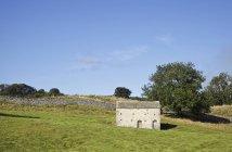Steinscheune im yorkshire dales National Park, wensleydale, yorkshire dales, vereinigtes Königreich — Stockfoto