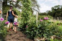 Ragazza e donna che camminano attraverso il giardino, portando cesti con Dahlias rosa . — Foto stock
