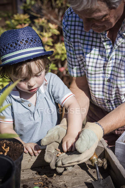 Man and a young child gardening — Stock Photo