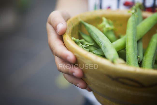Чаша Свіжезібрані горох — стокове фото