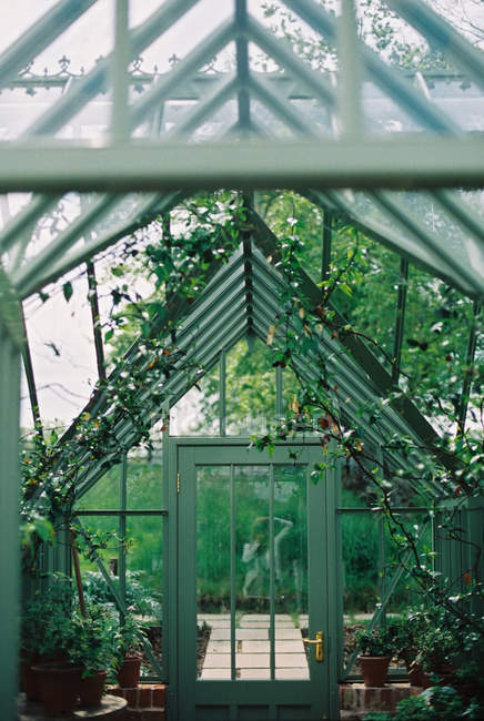 Wooden frame conservatory with plants. — Stock Photo