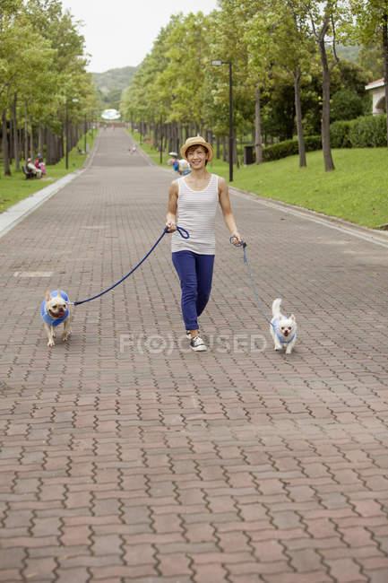 Японські жінки ходьбі дві собаки — стокове фото