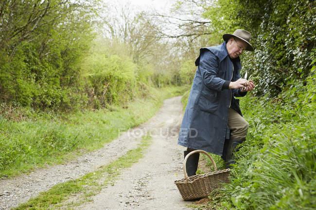 Mann auf Nahrungssuche für essbar und lecker Pflanzen — Stockfoto