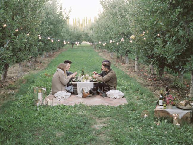 Menschen mit einem Picknick auf dem Rasen. — Stockfoto