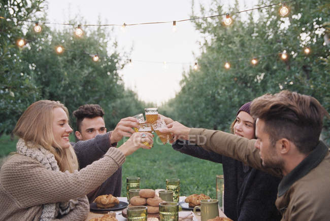 People toasting with a glasses of cider — Stock Photo