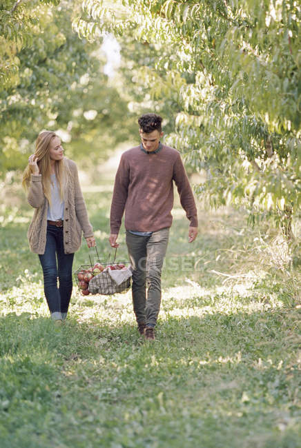 Couple portant un panier de pommes . — Photo de stock
