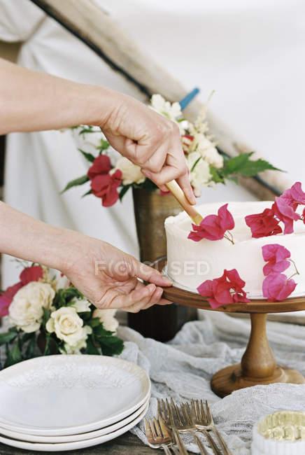 Mujer cortando una torta - foto de stock