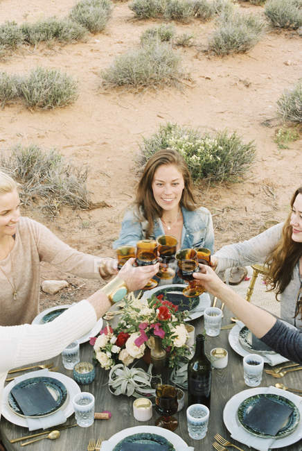 Women raising their glasses to toast — Stock Photo