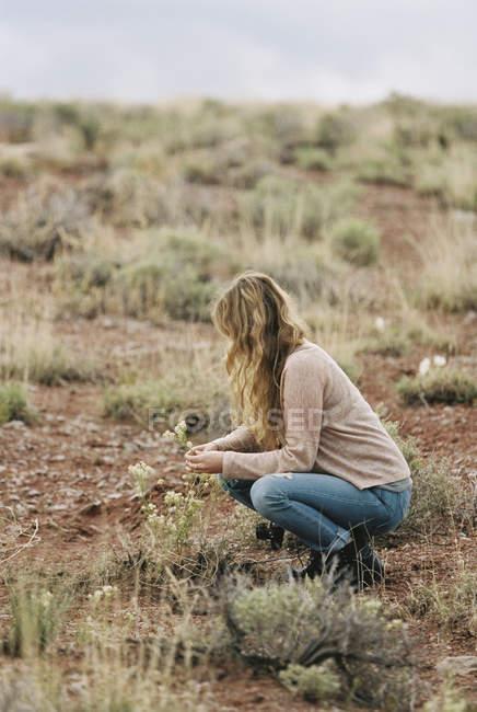 Frau kniet und pflückt Wildblumen — Stockfoto