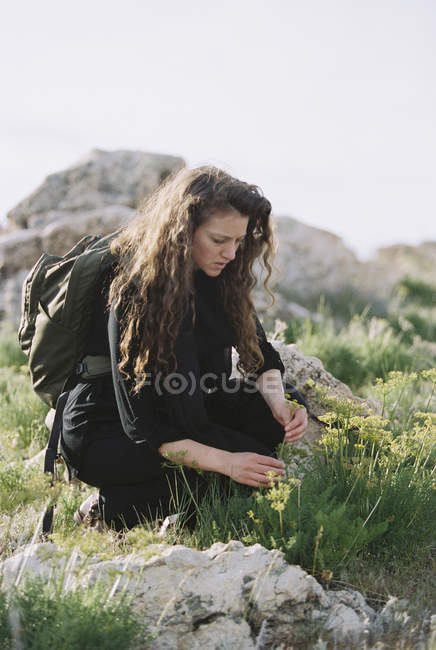 Woman picking wild flowers — Stock Photo