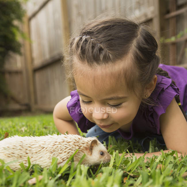 Girl looking at a small hedgehog — Stock Photo