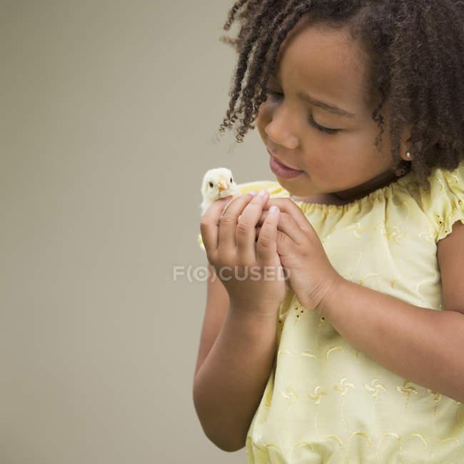 Девочка, держащая цыпленка — стоковое фото