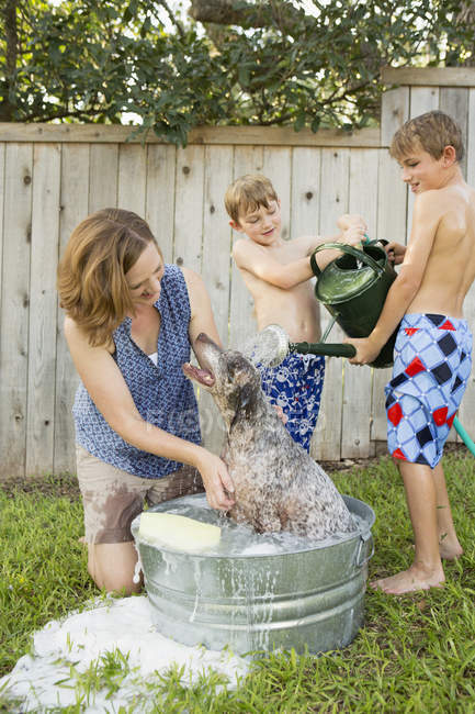 Family washing dog in tub — Stock Photo