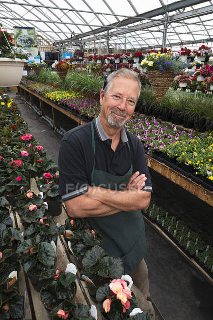 Man standing in a greenhouse — Stock Photo