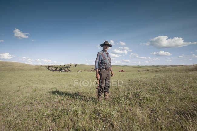 Trabajo de vaquero en llano - foto de stock