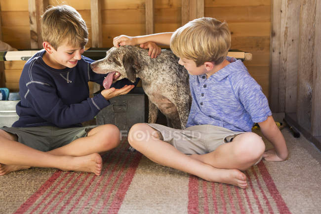 Brothers playing with dog — Stock Photo