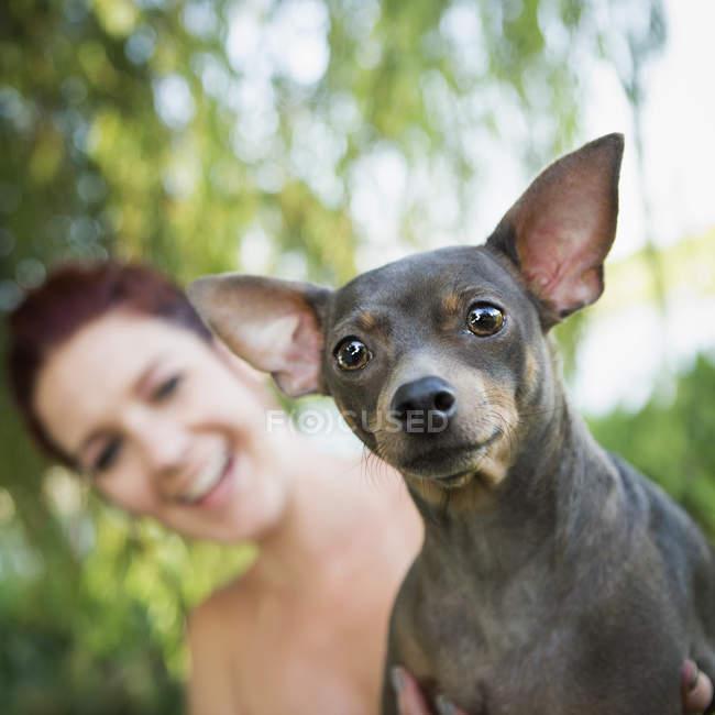 Donna con un cane piccolo . — Foto stock