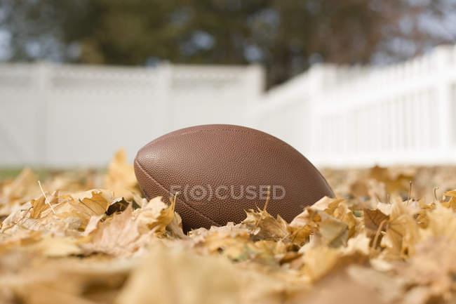 Calcio ovale su foglie di autunno . — Foto stock