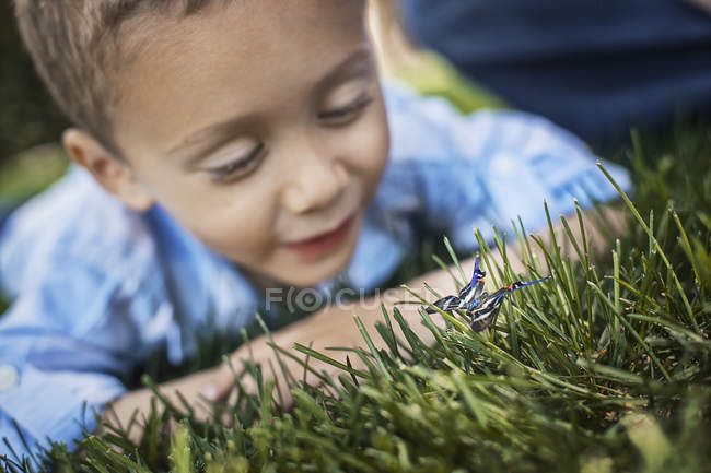 Boy examining a butterfly — Stock Photo