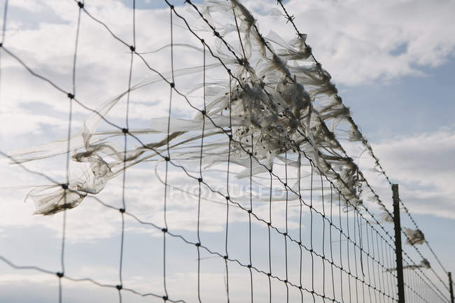 Plastic bag caught on fence — Stock Photo