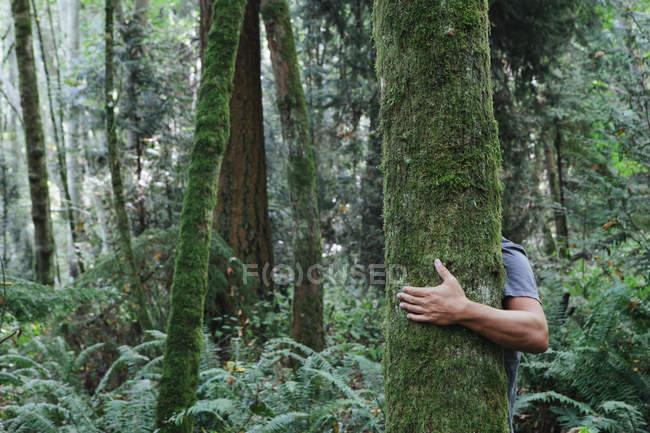 Uomo che abbraccia albero — Foto stock