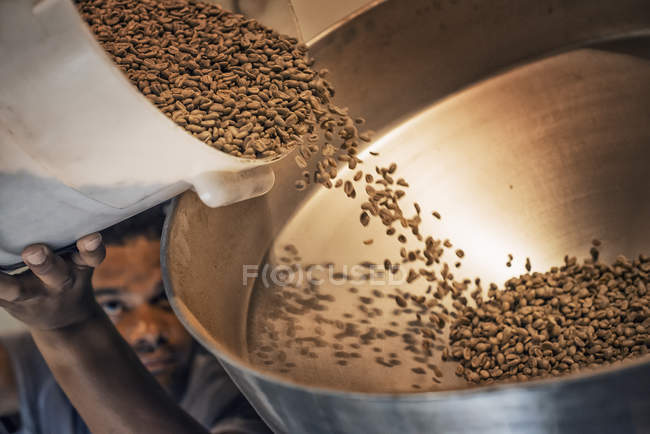 Processing coffee beans for roasting — Stock Photo
