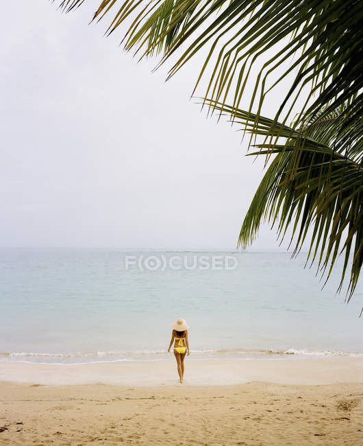 Женщина, одетая в желтый бикини на пляже — стоковое фото