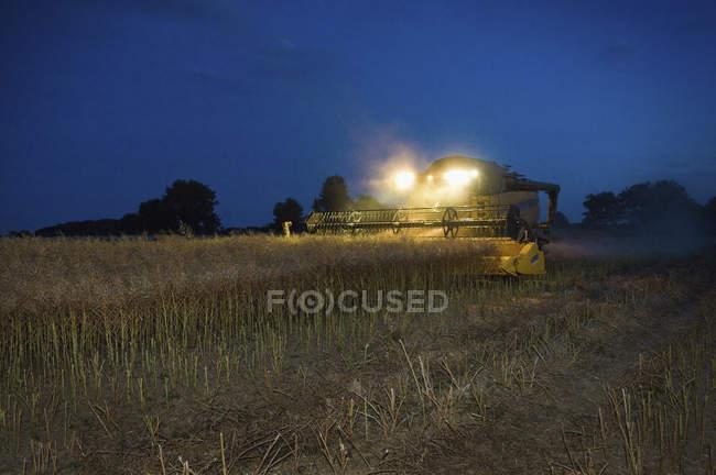 Combine harvester with headlights — Stock Photo