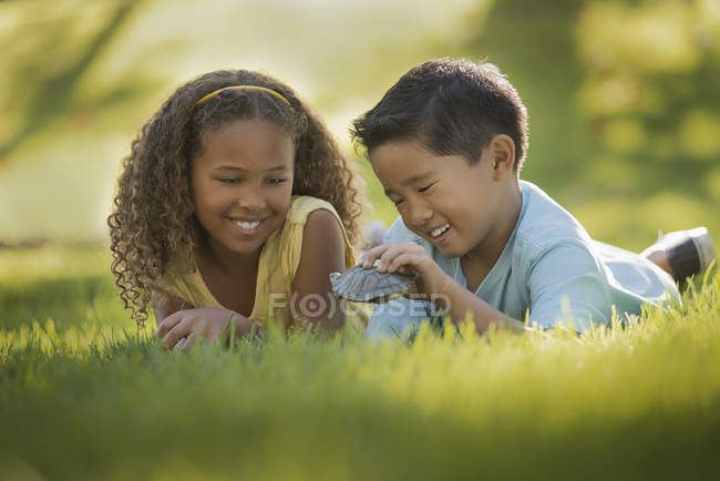 Children holding terrapin turtle. — Stock Photo