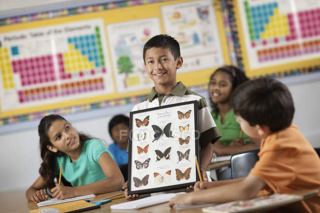 Boy with butterfly specimens. — Stock Photo