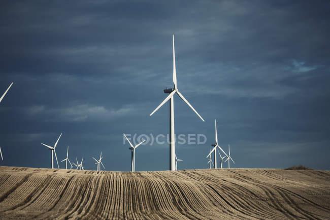 Turbinas eólicas que atingem a distância — Fotografia de Stock
