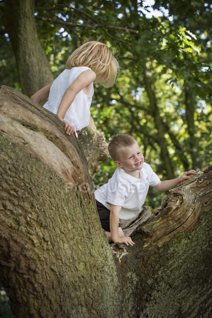 Jungen und Mädchen Klettern — Stockfoto
