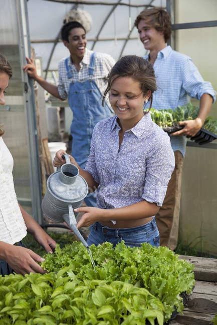 Plantas riego mujer - foto de stock