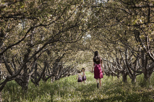 Children and an older girl walking in a woodland tunnel — Stock Photo