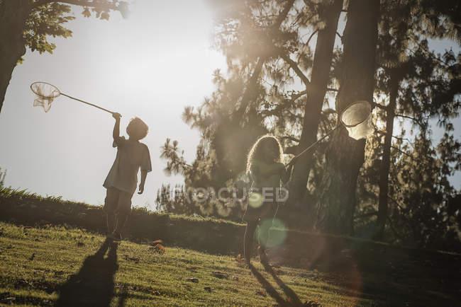 Kinder fangen Schmetterlinge — Stockfoto