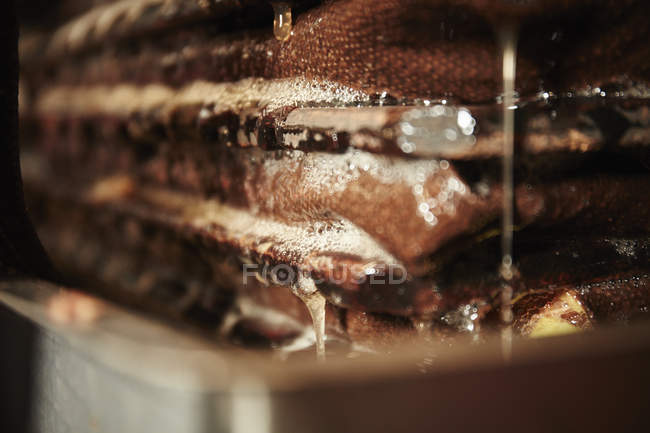Close up of the cider press — Stock Photo