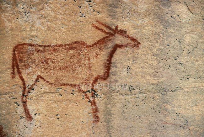 Pittura della roccia di eland — Foto stock