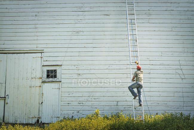 Man climbing a ladder — Stock Photo