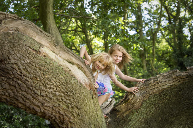 Two girls climbing a tree — Stock Photo