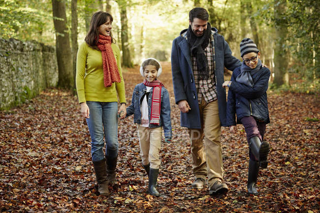 Family walking hand in hand — Stock Photo