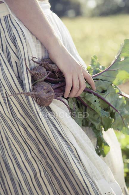 Ragazza con una gonna a strisce raccolta barbabietole — Foto stock