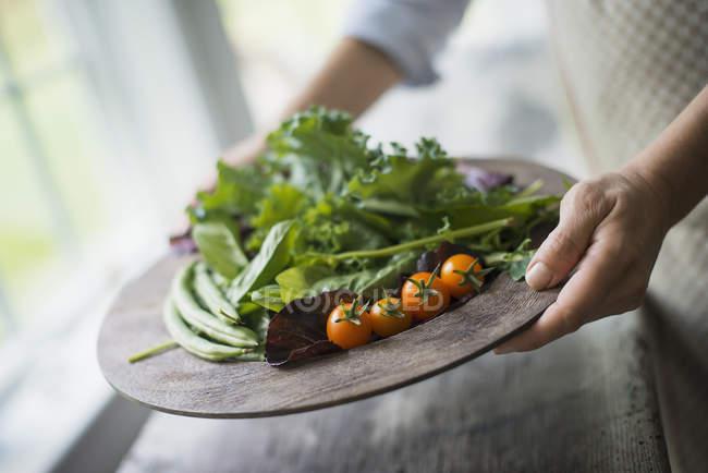 Bandeja de verduras, tomates y verduras - foto de stock
