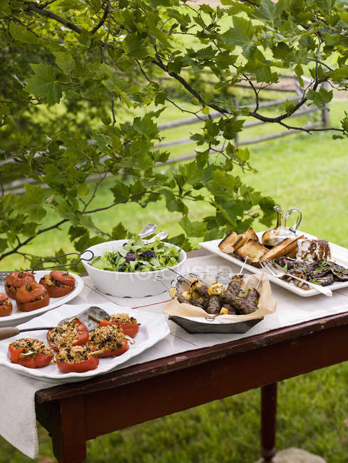 Buffet table set up in a garden u2014 Stock Photo & Buffet table set up in a garden u2014 Stock Photo | #124363644