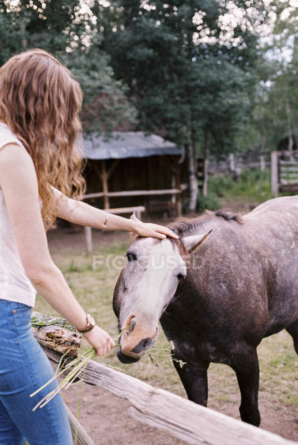 Woman feeding a horse — Stock Photo