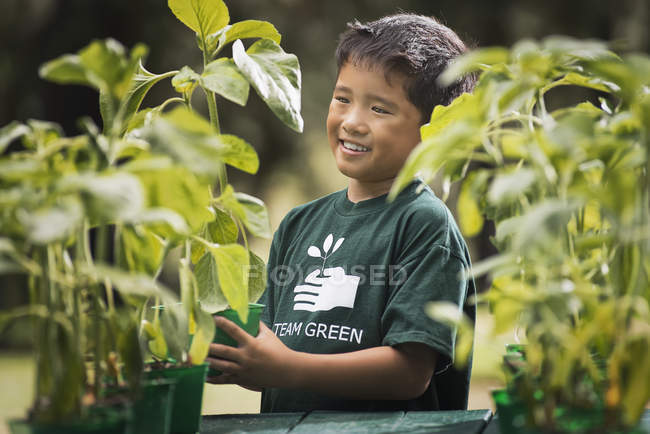 Asian boy in a plant nursery. — Stock Photo