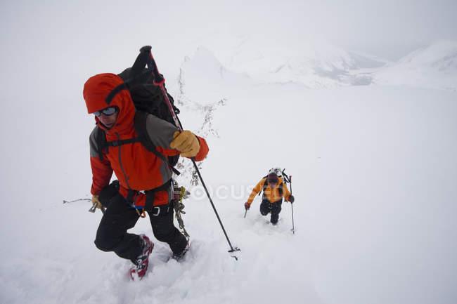 Dois esquiadores subir uma ladeira — Fotografia de Stock
