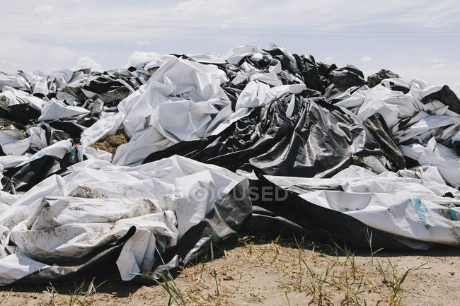 Black and white discarded plastic bag — Stock Photo