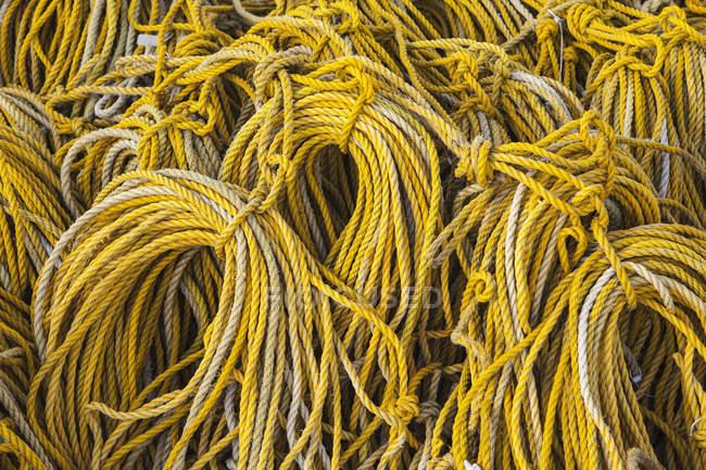Згорнувшись жовтий мотузку — стокове фото