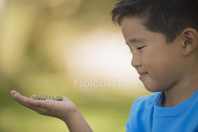 Мальчик, держащий гусеницу — стоковое фото